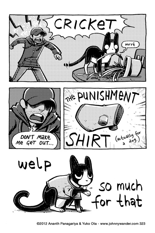 323 - shirt cat
