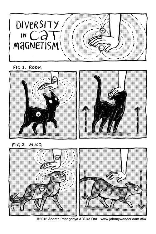 354 - diversity in cat magnetism