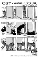 194 - the most cleverest of cats